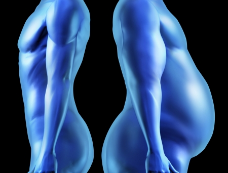 muscular anatomy: Human body shape comparison with dieting weightloss for a healthy fit person and a fat obese overwieght individual side by side as physical well being and health in regards to fitness of anatomy