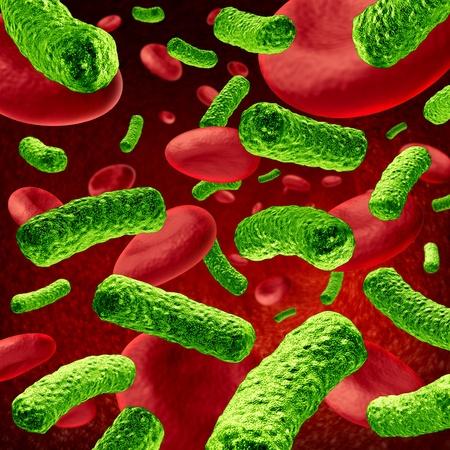 monella: Las bacterias La infecci�n de sangre o sepsis bacteriana, como una ilustraci�n m�dica