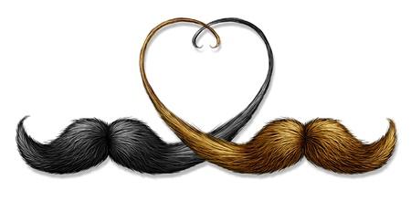 twee snorren met blond haar en zwarte snorharen gecombineerd Stockfoto