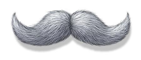 bigote: Bigote blanco o el bigote pelo gris Foto de archivo