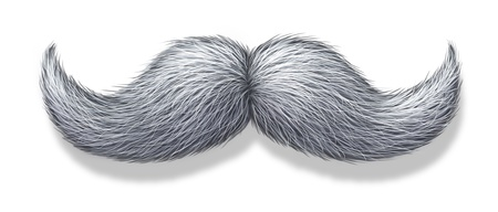 White moustache or grey hair mustache