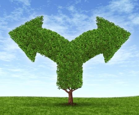 going in: Crecientes opciones de negocio y el dilema financiero debido al crecimiento de la fortuna financiera en forma de �rbol y hojas en forma de flechas en horquilla que van en direcciones opuestas en un cielo de verano azul con hierba verde Foto de archivo