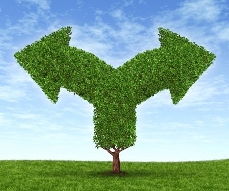 Growing business options and financial dilemma due to growth in financial fortune as a tree and leaves in the shape of forked arrows going in opposite directions on a blue summer sky with green grass