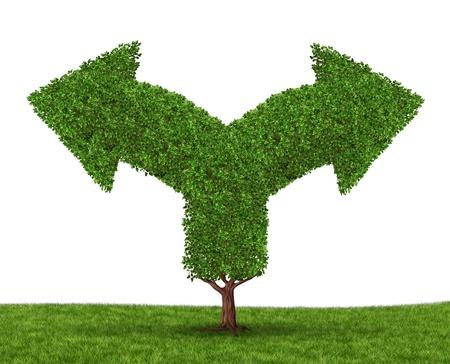 incertezza: Decisioni di crescita e dilemma scelta con un albero a forma di due frecce che vanno in direzioni opposte, come un concetto di incertezza dovuta alle imprese che crescono al successo sperimentare dolori della crescita