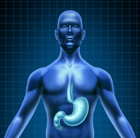dolor de estomago: Estómago y la digestión humana con un diagrama de médico de la parte superior del cuerpo con el sistema digestivo con el órgano resaltado con una rejilla en el fondo negro como un icono de la salud gástrica de atención