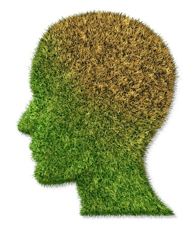 enfermedades mentales: Enfermedad cerebral y la enfermedad mental médica concepto de atención de la salud de la pérdida de la memoria como la demencia y el Alzheimer