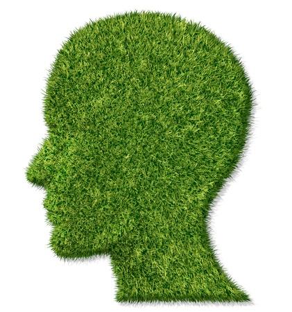 arbol de problemas: Cerebro de la salud y la demencia funci�n de la memoria y la lucha contra la enfermedad de Alzheimer Foto de archivo