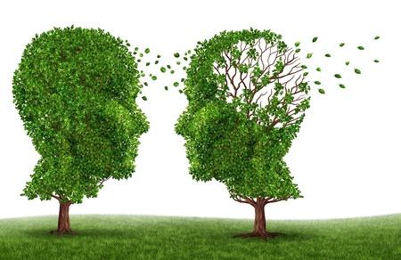 Życie z pacjentem demencji i choroby Alzheimera z dwoma drzewami w kształcie ludzkiej głowy i mózgu jako symbol stresu i wpływ na bliskich i opiekunów utratą pamięci i funkcji poznawczych wywiadu