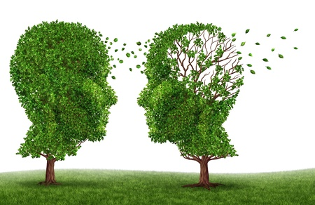 brain: Living with a dementia patient and alzheimers disease with two trees in the shape of a human head and brain as a symbol of the stress and effects on loved ones and caregivers by the loss of memory and cognitive intelligence function