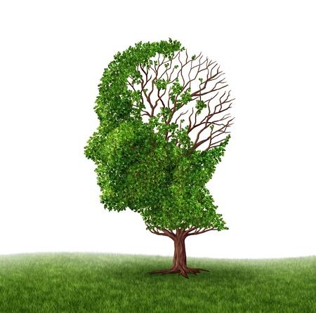 arbol de problemas: P�rdida de la funci�n cerebral y el tratamiento de la demencia y el Alzheimer Foto de archivo