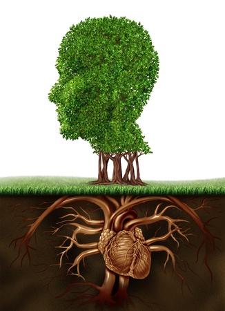raices de plantas: Vida org�nica y el concepto de estilo de vida saludable con un �rbol en forma de una cabeza humana y las ra�ces en forma de un �rgano coraz�n anat�mico que representa una vida vegetariana comer verduras y frutas para un cuerpo cada vez mayor Foto de archivo