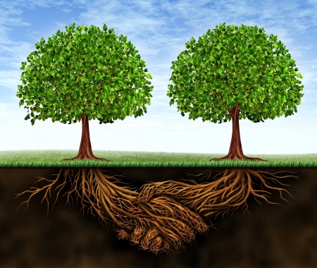 Business teamwork growth as a symbol of financial cooperation and deal making between two partners as trees growing and underground plant roots in the shape of shaking hands resulting in growing success