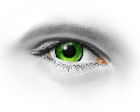 Green human eye on a white background as a symbol of the environment and conservation or an icon for clean animal freindly cosmetics and beauty makeup  photo