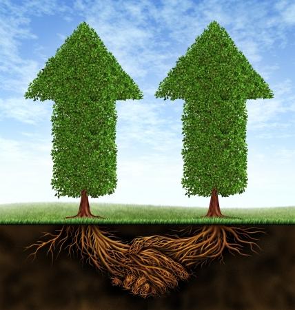 として 2 つのパートナー間の金融協力のアイコンとしてのビジネス パートナーシップの成長の成長の矢印の形で木および植物の根の形の成功の結果 写真素材
