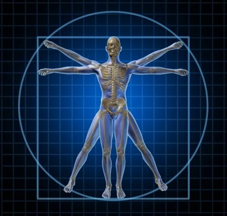 El hombre de Vitruvio esqueleto humano y el cuerpo con un frontal de Leonardo Da Vinci como la anatomía plantean para el cuidado de la salud y la medicina icono en un fondo negro