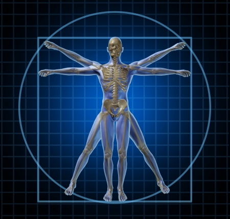 physiology: Vitruvian human skeleton man and body with as a frontal Leonardo Da Vinci like anatomy pose for health care and medicine icon on a black background