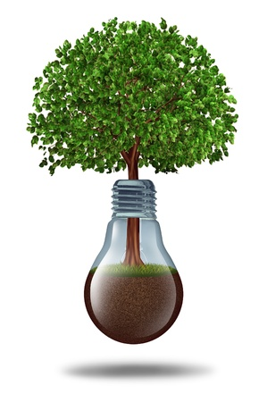 financial growth: Business development and financial growth with a tree growing out of a lightbulb with fertile earth inside as a concept of innovation and ecological sustainability on a white background