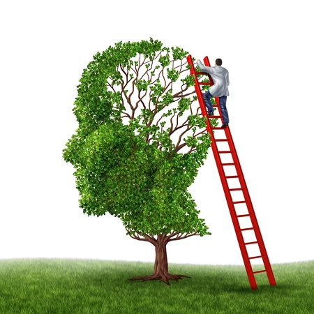 expertise concept: Brain and memory medical exam with a doctor on a red ladder climbing high to inspect a human head shaped tree as a symbol of dementia disease prevention and cure research on a white background