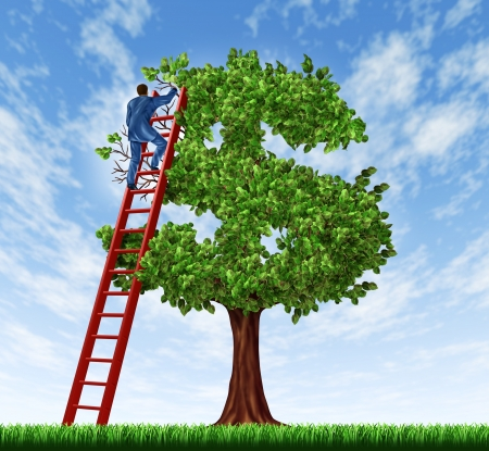 financial symbol: Managing your money and debt management with a business man on a ladder taking care of a tree that is shaped as a dollar symbol as a  financial concept of wealth growth and economic advice