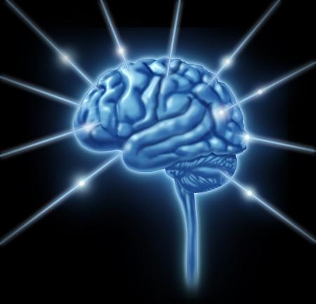 고립 된 정신 신경 엽 (叶)의 활동을 뇌의 연결 정보 엽 섹션 부문