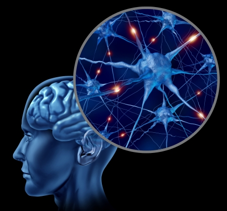 synapse: Human brain medical symbol represented by a close up of neurons and organ cell activity showing intelligence related to memory