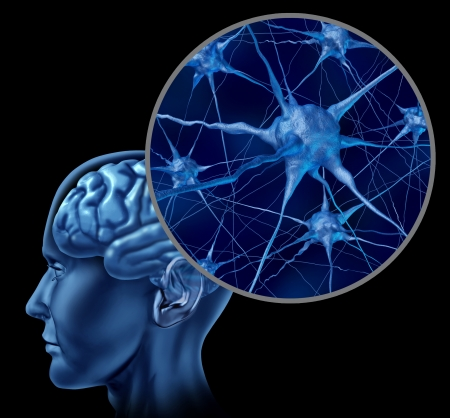 Human brain medical symbol represented by a close up of neurons and organ cell activity showing intelligence related to memory  版權商用圖片