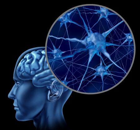 Menselijke hersenen medische symbool vertegenwoordigd door een close-up van neuronen en orgel cel-activiteit laten zien intelligentie met betrekking tot het geheugen