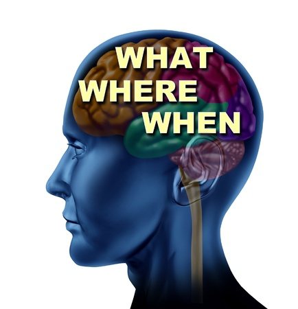 Brain what where when decision choice concept isolated on a whitebackground as a symbol of confusion  Stock Photo - 14119834