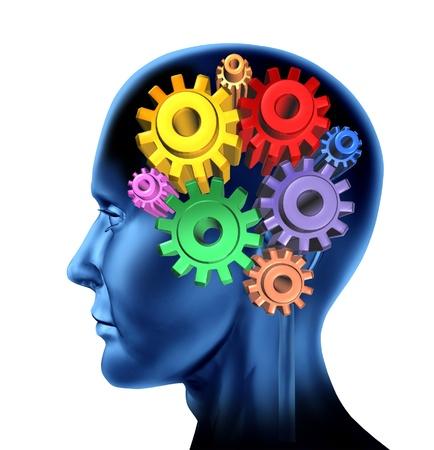 función de la inteligencia del cerebro aislado en un fondo blanco con los engranajes y los símbolos dentadas Foto de archivo
