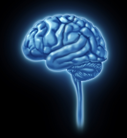 matters: Brain lobe sections divisions of mental neurological lobes activity isolated