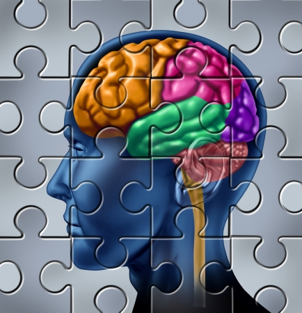 memories: Intelligence and memory symbol represented by a multicolored human brain with a jigsaw puzzle texture   Stock Photo