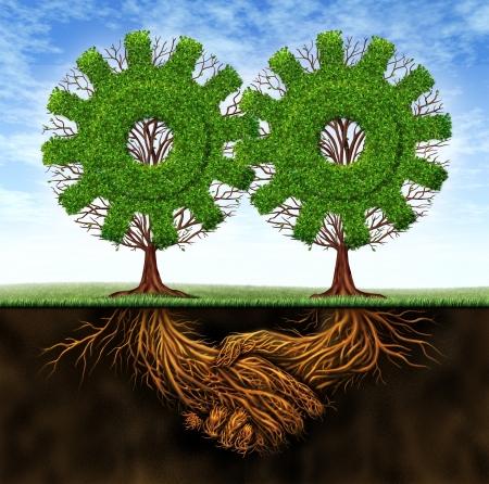 manos juntas: Negocios acuerdo y la cooperaci�n que resulta en el crecimiento econ�mico entre los dos socios que trabajan conjuntamente con el concepto de dos �rboles en forma de engranaje, con ra�ces en la forma de un apret�n de manos Foto de archivo