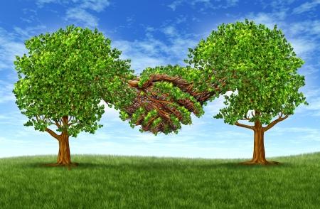 Business-Partnerschaft Wachstum Erfolg mit zwei wachsenden Grad Bäume in der Form von zwei Händen Hand schütteln zusammen als eine finanzielle Symbol der Vereinbarung und Vertrag zwischen zwei Unternehmen oder Geschäftsleute Standard-Bild