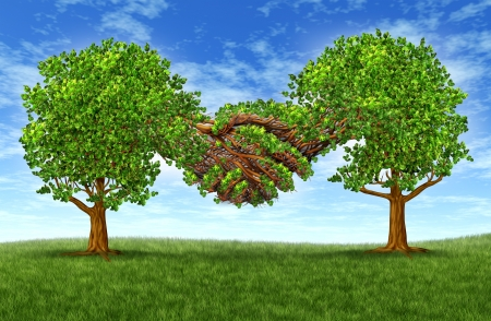 Business partnership growth success with two growing gree trees in the shape of two hands  hand shaking together as a financial symbol of agreement and contract between two companies or business men  Stock Photo