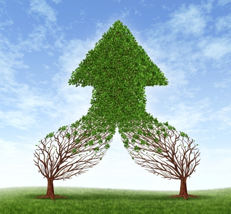 merging together: Working together business symbol and financial merger concept as two trees connecting  and merging as one forming a healthy growing arrow shaped tree as an icon of teamwork success  Stock Photo