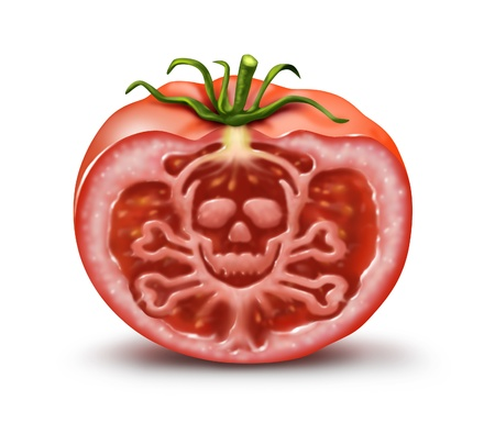 Food danger symbol for people with an allergy and allergic reactions or contaminated agricultural fresh market produce represented by a single tomato in the shape of a skull and bones hazard warning on white  Stock Photo