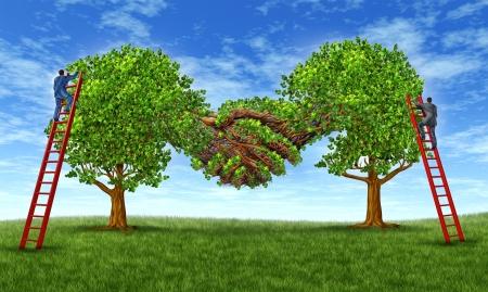 La creación de confianza de negocios y hacer crecer una sociedad financiera a través de un acuerdo como la fusión de dos árboles que crecen juntos en una forma de movimiento de la mano con los empresarios en las escaleras que trabajan juntos para el éxito Foto de archivo - 14571378