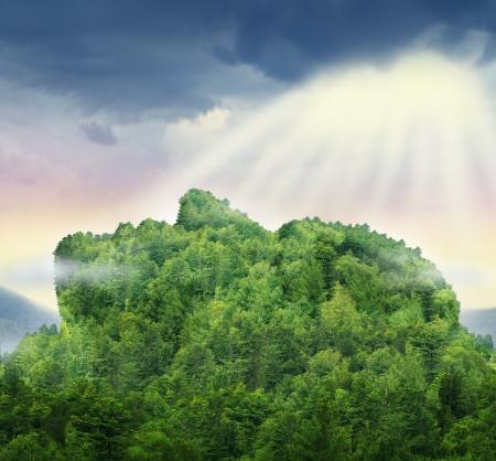 crecimiento personal: Logros de la humanidad y el poder del éxito personal en el negocio representado por una montaña de árboles en la forma de una cabeza y la cara con la luz del sol brillando por encima de las nubes como un símbolo de esperanza para el futuro