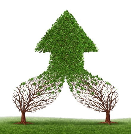 joining forces: Teamwork Success and working together as a business symbol and financial merger concept with two trees connecting and merging as one forming a healthy growing arrow shaped tree as an icon of growth  Stock Photo