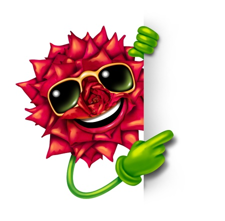 Florist flower sign with a fun smiling happy red rose character wearing sunglasses and pointing with green arms and hands to a blank sign as a concept of beauty of nature and plants business promotion  photo