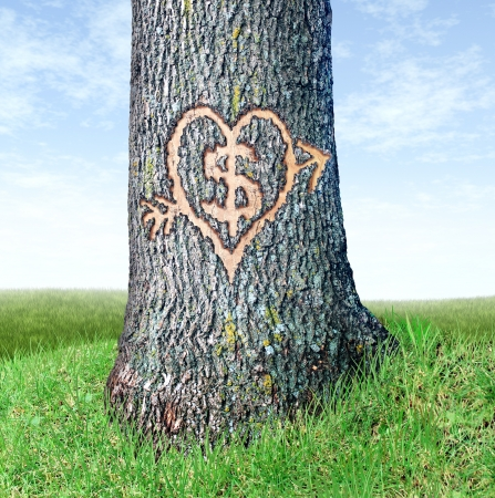 love strategy: Wealth planning and investing early as a financial concept with a close up of a tree trunk with a dollar symbol and heart shape carved into the bark