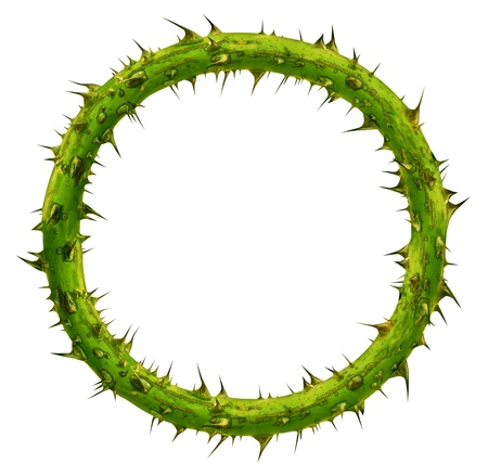 sacrificio: Corona de espinas como un marco planta ramo circular con un área en blanco con agujas puntiagudas como un símbolo de sacrificio y valentía aislado en un fondo blanco Foto de archivo