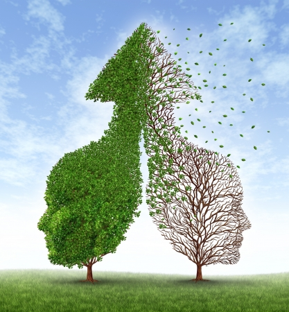 grieving: Partnership problems with two trees in the shape of human heads merged together into an up arrow and one of the trees losing the leaves as a concept of divorce and separation challenges in a broken personal relationship business disagreement  Stock Photo