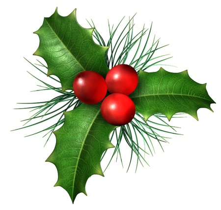 クリスマスのヒイラギを持つ季節装飾と冬の休暇のシンボルとして、白い背景に分離した常緑の松の葉と緑の葉と赤い果実 写真素材
