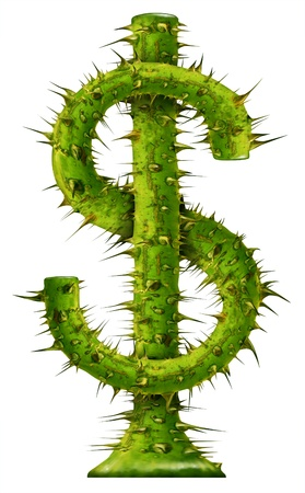investment risk: Investment risk and protecting your wealth represented by a dollar symbol made of growing thorn plant with protective painful needles as symbols of financial dangers and money security on white