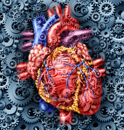 Human heart health medical care symbol with gears and cogs connected together pumping blood representing the function of a healthy organ and anatomy