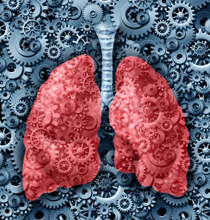 bronchioles: Human lungs health medical care symbol with gears and cogs connected together breathing oxygen representing the function of a healthy lung organ and anatomy  Stock Photo
