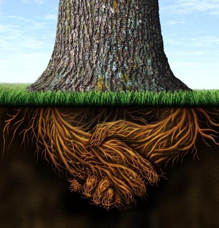 integridad: Fuertes raíces comerciales profundas como el tronco de un árbol con la raíz en la forma de un apretón de manos como símbolo de la unidad y la integridad de confianza en las finanzas y las relaciones