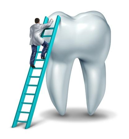 Zahnarzt Gesundheit und zahnärztliche Kontrolluntersuchung medizinisches Konzept mit einem Arzt in Uniform Erklimmen einer Leiter Durchführen einer Kontrolle und Diagnose von einem gesunden Zahn auf weißem Hintergrund