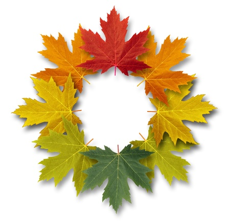 Autumn leaves decorative circular frame